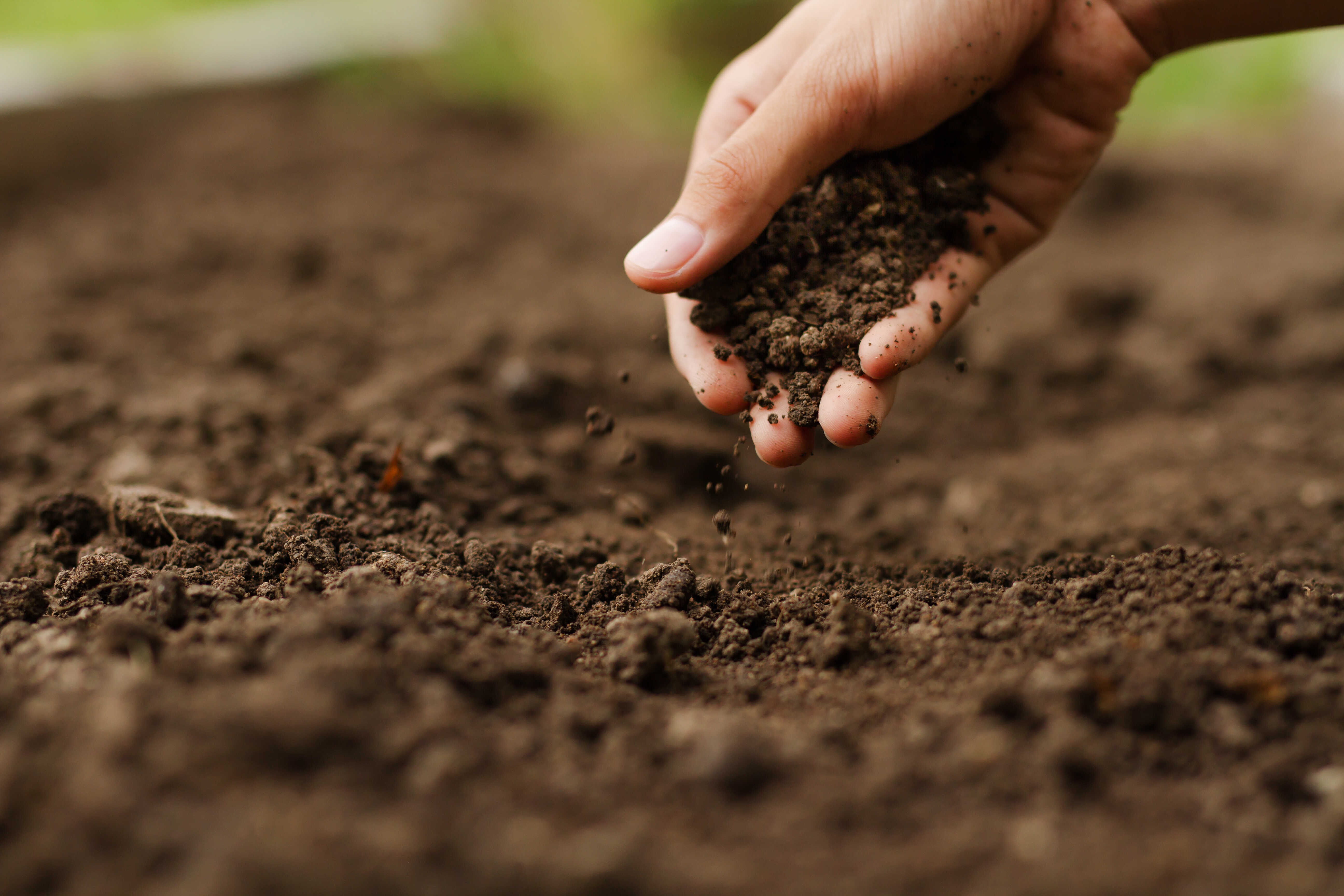 How NEO can optimise your nutrient management plan
